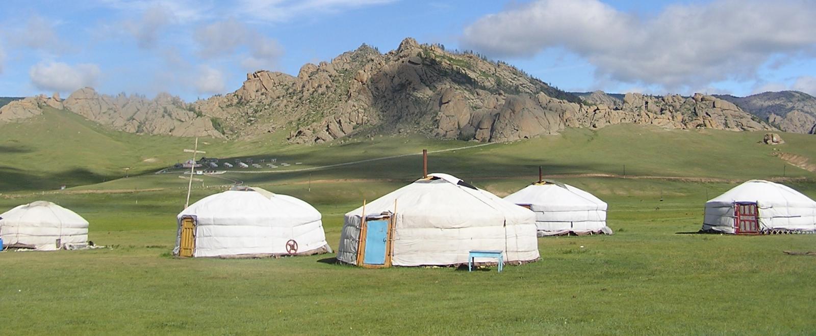 モンゴルで海外ボランティア